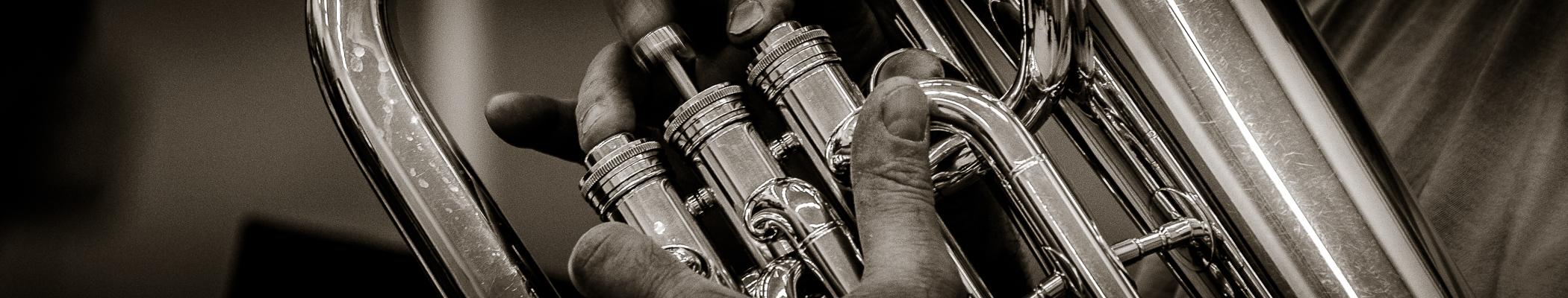 FOT©HAST Drachtster Harmonie